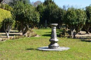 O jardim das Camélias